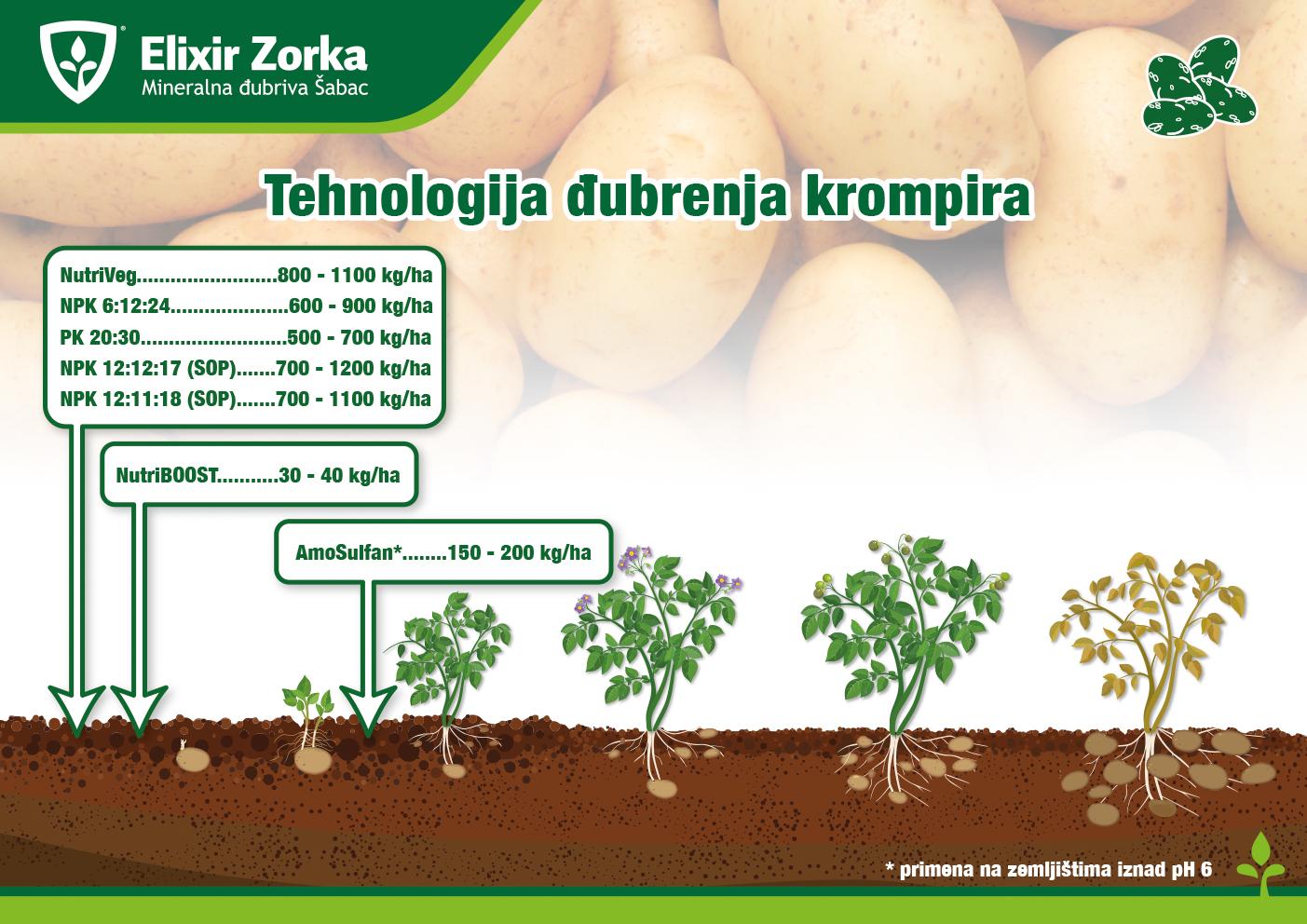 Tehnologija đubrenja krompira
