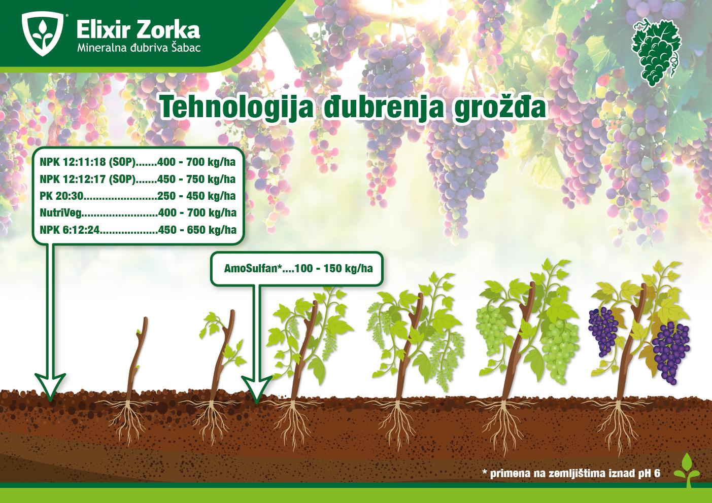Tehnologija đubrenja grožđa