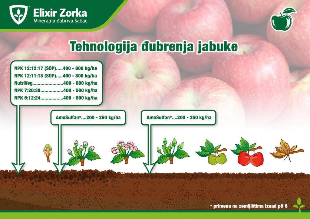 Tehnologija đubrenja jabuke