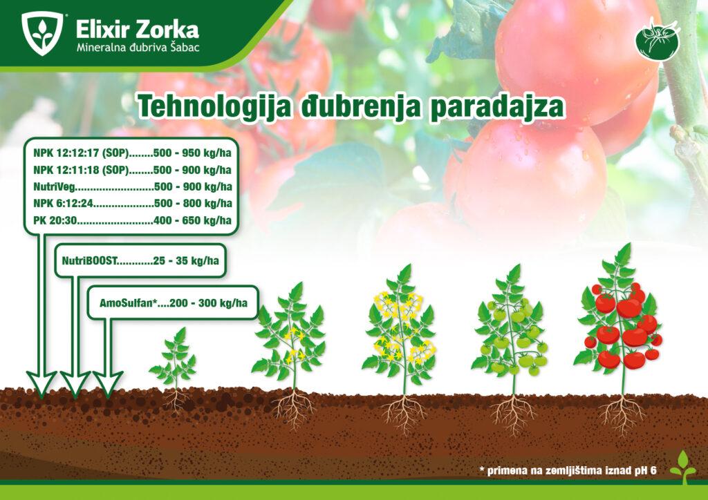 Tehnologija đubrenja paradajza