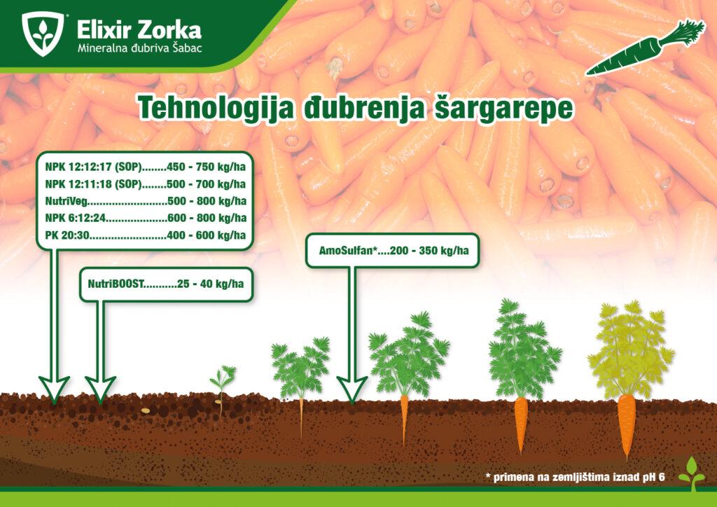 Tehnologija đubrenja šargarepe